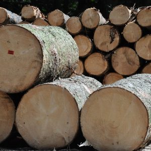 Wood Products Market 2013-2019